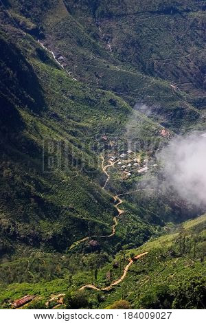 Mountain valley in the mountains of Sri Lanka in the clouds. Plateau