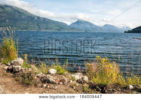 Sunny summer morning on the shore of fjord Norway