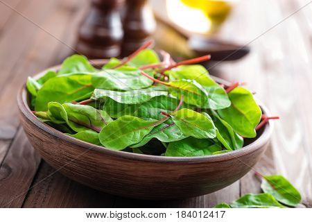Fresh mangold leaves swiss chard or leaf beet