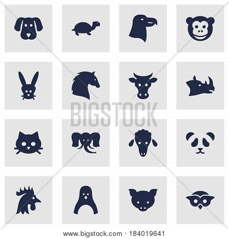 Set Of 16 Alive Icons Set.Collection Of Bear, Bunny, Trunked Animal And Other Elements.