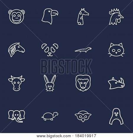 Set Of 16 Brute Outline Icons Set.Collection Of Eagle, Owl, Monkey And Other Elements.