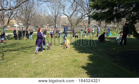 People with pets search for Easter Eggs at Horner Park Dog Easter Egg Hunt, March 26th, 2016