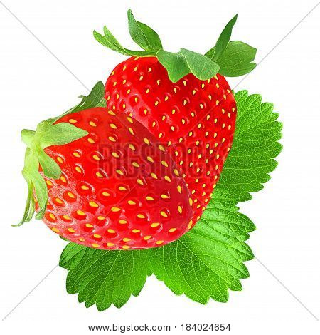 Isolated strawberry on white background as package design element.