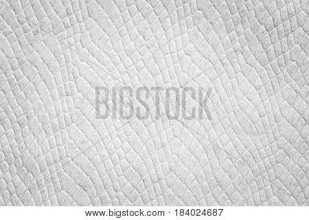 Black and white leather, abstract texture background