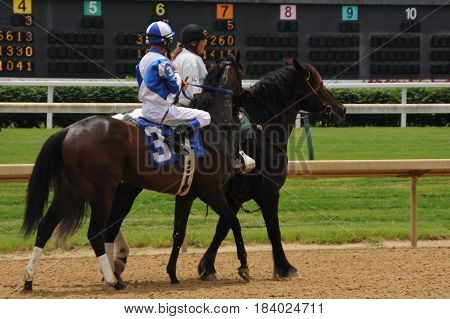 Churchill Downs, horse with rider being led to starting gate, May 27th, 2016