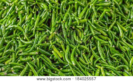 Pile of fresh green chilli peppers texture. Raw food background. Close up. Traditional vegetable market in Bangkok, Thailand. Selective focus