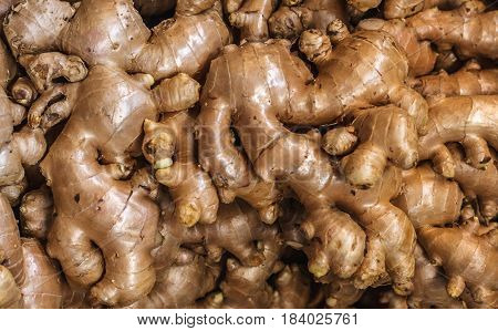 Pile of ginger roots for sale on the market in Bangkok, Thailand. Selective focus