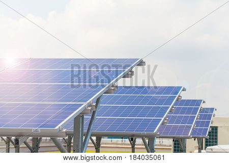 Solar Panels Or Solar Cells On Factory Rooftop Or Terrace With Sun Light, Industry In Thailand, Asia