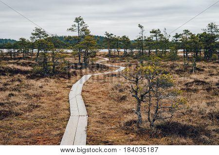 Hiking trail leading through fen to Kakerdaja lake Jarva county Estonia