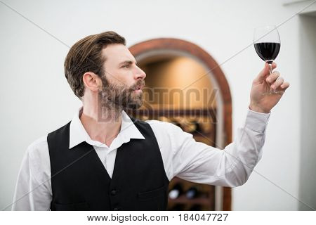 Male waiter holding wine glass in the restaurant