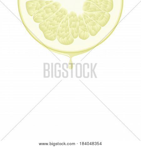 Isolated realistic colored half circle slice of yellow color juicy pomelo with drop of juice on white background