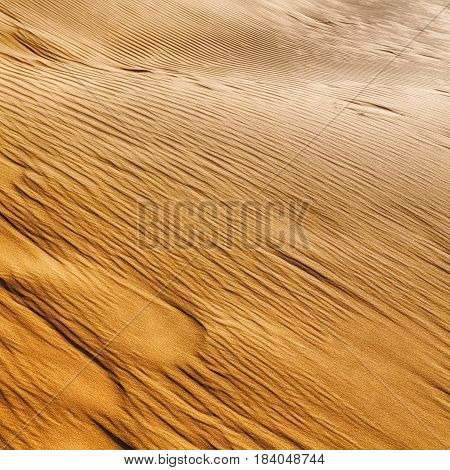 In Oman The Old Desert And The Empty Quarter Abstract  Texture Line Wave
