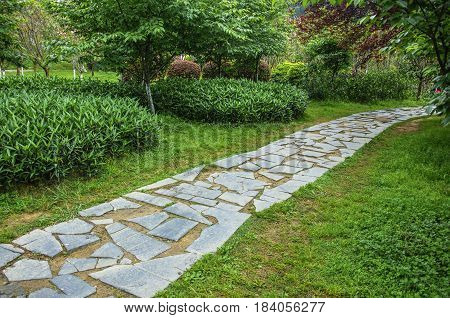 The clear pathway in garden in raining
