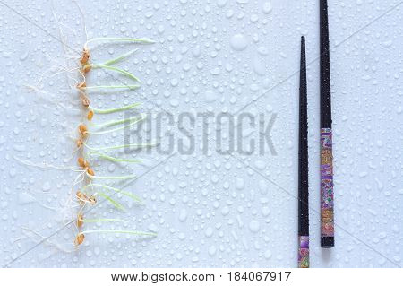 Row of wheat sprouts and Japanese chopsticks. Light background with water drops. Healthy food concept