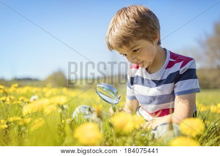 Young boy exploring nature in a meadow with a magnifying glass looking for insects