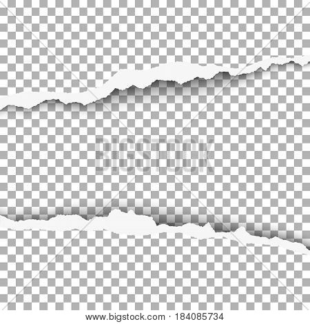 Snatched middle of paper with torn edges soft shadow and space for text. Damaged sheet of paper with transparent background for banner ad and other aims. Template paper design.