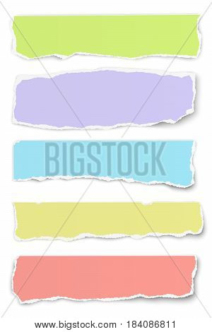 Collection of vector oblong torn different colors paper tears isolated on white background
