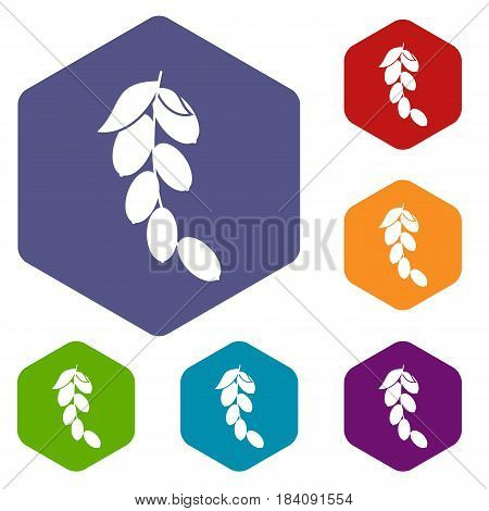 Branch of cornel or dogwood berries icons set hexagon isolated vector illustration