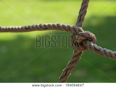 rope tied and pull four in different directions with green background