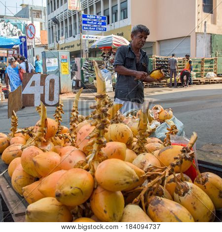 COLOMBO SRI LANKA - MARCH 15 2016: Man selling coconuts on the street in town on March 15 2016 in Colombo Sri Lanka. Colombo is prime business and office space of Sri Lanka.