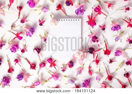 Flat Lay Of Heads Hybrid Colorful Fuchsia Flowers And Empty Notebook On White Background, Close Up