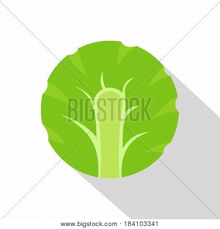 Fresh slice of broccoli icon. Flat illustration of fresh slice of broccoli vector icon for web on white background