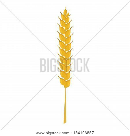 Wheat ear icon. Cartoon illustration of wheat ear vector icon for web