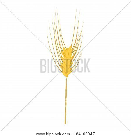 Rye stalk icon. Cartoon illustration of rye stalk vector icon for web