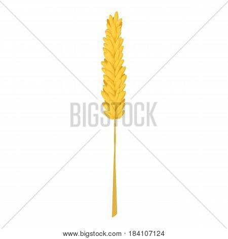 Rice stalk icon. Cartoon illustration of rice stalk vector icon for web