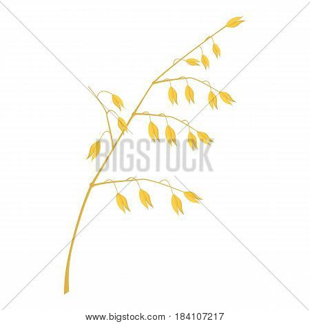 Cereal plant icon. Cartoon illustration of cereal plant vector icon for web
