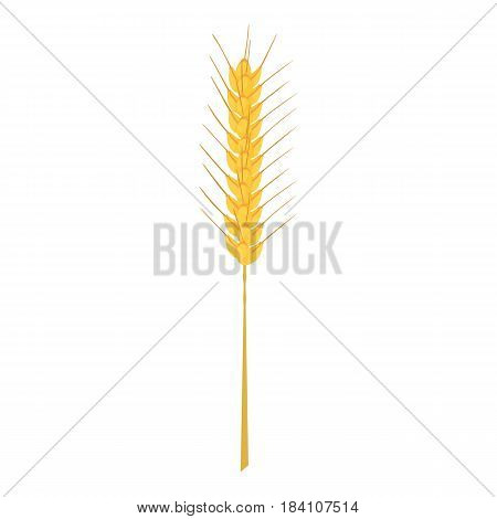 Barley stalk icon. Cartoon illustration of barley stalk vector icon for web