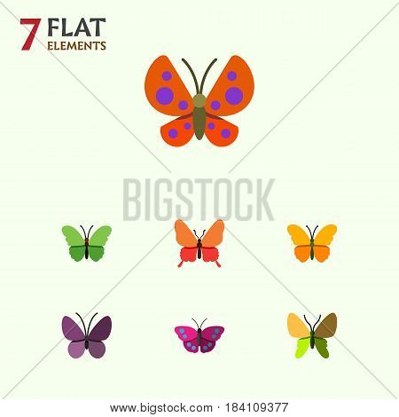 Flat Butterfly Set Of Moth, Violet Wing, Butterfly And Other Vector Objects. Also Includes Monarch, Archippus, Insect Elements.