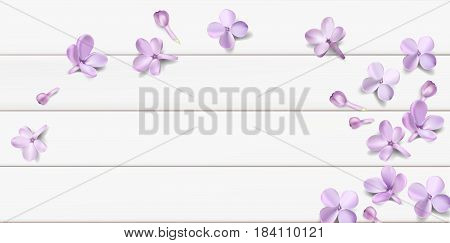Soft Pastel Color Floral Background With Place For Text Purple Lilac Flowers And Petals Watercolor