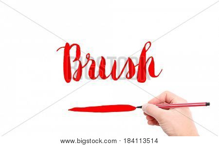 The word of Brush written by hand on a white background