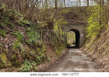 Tunnel of railway viaduct near village Karba Machuv kraj region during spring Czech