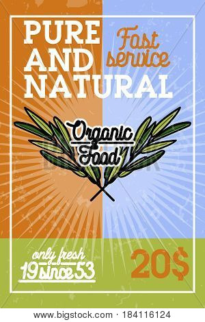 Color vintage organic food banner. Vector illustration, EPS 10