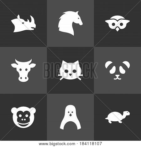 Set Of 9 Alive Icons Set.Collection Of Kine, Rhinoceros, Tortoise And Other Elements.