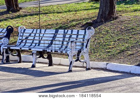 Striped wooden benches in a spring park