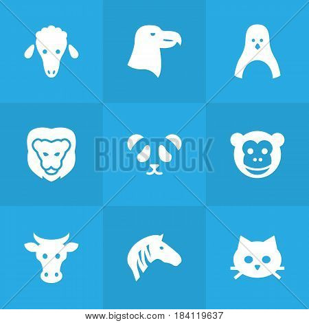 Set Of 9 Beast Icons Set.Collection Of Horse, Kine, Ape And Other Elements.