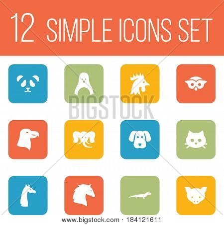 Set Of 12 Brute Icons Set.Collection Of Pussy, Camelopard, Steed And Other Elements.