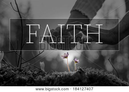 Faith text over hands nurturing a flower in a conceptual image with selective purple colors to the flowers.