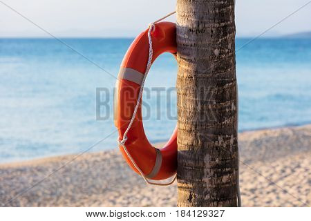 orange lifebuoy ring on tropical beach