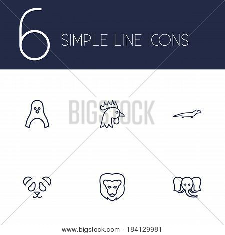 Set Of 6 Alive Outline Icons Set.Collection Of Cock, Elephant, Penguin And Other Elements.
