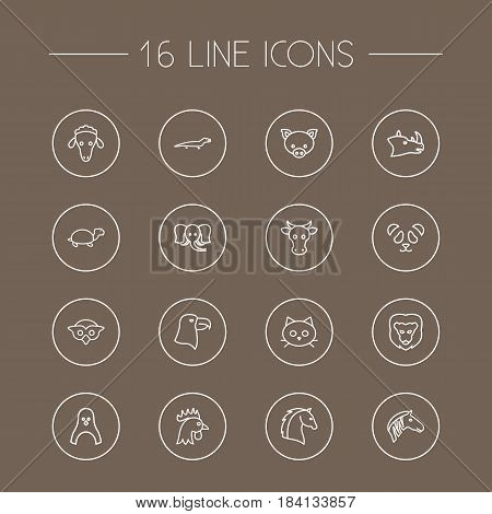 Set Of 16 Alive Outline Icons Set.Collection Of Pig, Elephant, Cow And Other Elements.