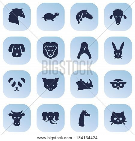 Set Of 16 Brute Icons Set.Collection Of Hound, Steed, Wildcat And Other Elements.