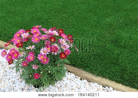 Combination of plants artificial grass and white pebbles