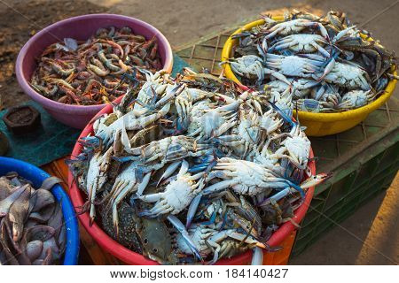 Sale Of Crabs In The Markets Of India