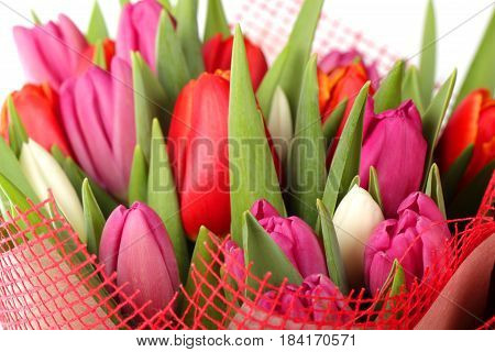 Bouquet of the different color tulip flowers