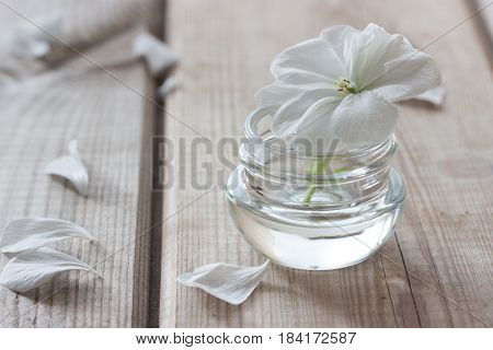 moisturising lotions and white flower spa treatments