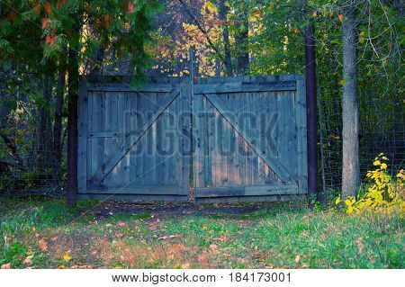 wooden closed gate in an forest. secure territory